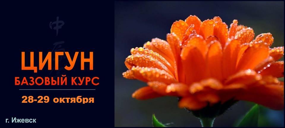 Ижевск: семинар Базовый курс Цигун